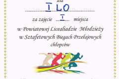 dyplom1_00-1
